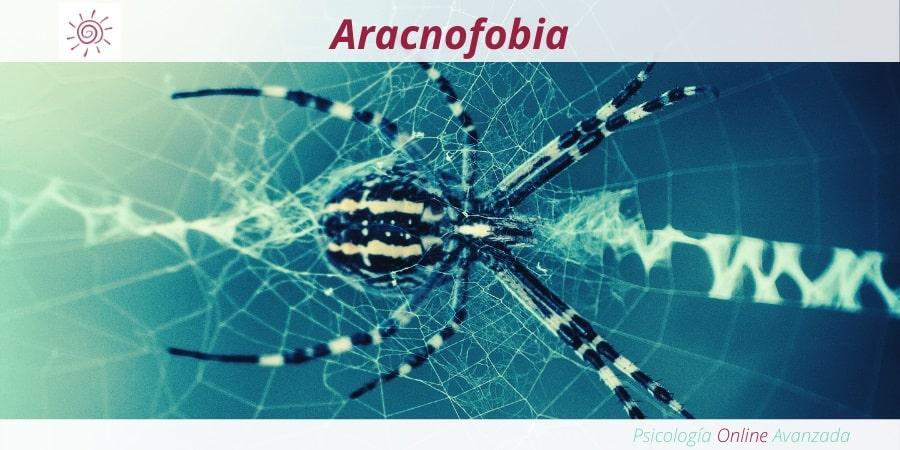 Aracnofobia, Síntomas y Causas de una fobia Fobias, Tratamiento para las fobias, Miedo, Pánico, Ansiedad, Terapia online, Exposición, Dificultad para respirar, Fobias, Síntomas de las fobias