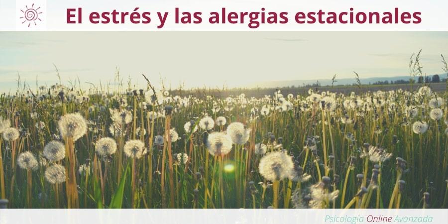 Las hormonas del estrés podrían agravar las alergias estacionales, Estrés, Meditación, Controlar el estrés, Ansiedad, Meditación, Terapia Online, Relajación.